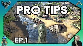 2018 ARK PRO TIPS YOU MAY NOT KNOW ABOUT # 1 [ARK SURVIVAL EVOLVED]