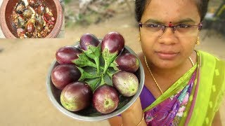 Traditional Brinjal Chutney Recipe | Different way to cook | VILLAGE FOOD