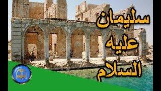 هل تعلم | قصة سليمان عليه السلام - وجيشه من الجن - قصص الانبياء - ح 15