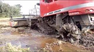 colheitadeira Massey Ferguson 6690 4x4 com esteiras trabalhando nas lavouras de arroz