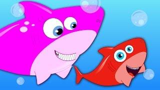 Five Little Sharks | Nursery Rhymes | Baby Rhymes | Children Rhymes For Kids