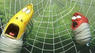 LARVA - SPIDER TRAP | Cartoons For Children | Larva Cartoon | Mini cartoon Movie | LARVA Official