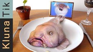 BLOBFISH FOR DINNER!!! Kluna Tik Dinner #57 | ASMR eating sounds no talk
