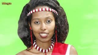 Ittiqaa Tafarii **NEW **Oromo Music 2017