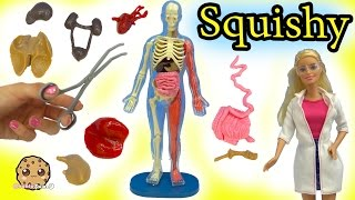 Squishy Human Body Parts with Scientist Barbie Teacher & Student Monster High Dolls Video