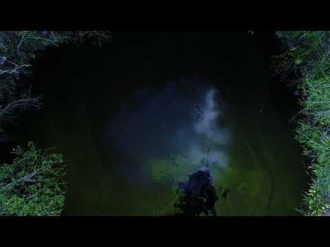Xxx Mp4 Cenote Sotuta De Pasos Yucatán 3gp Sex