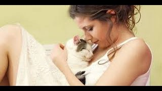 Kucing Netek Nenen Menyusui Porno Gokil