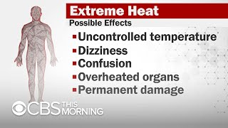 How to spot and prevent heat-related illnesses