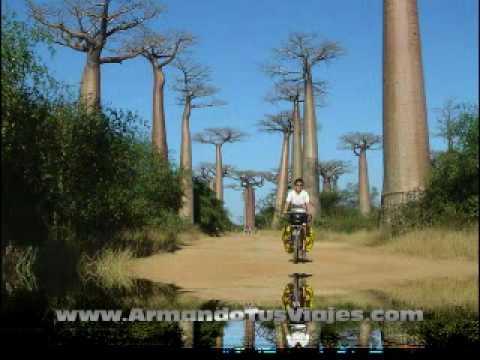 Isla Madagascar