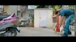 Raja Rani ~ 2013 ~ BD Rip ~ 720p