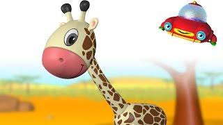TuTiTu Animals   Animal Toys and Songs for Children   Giraffe