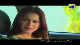 Bedardi Saiyaan Episode 15 & 16 Promo | Har Pal Geo