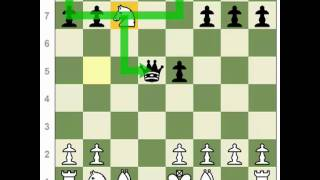 Chess Tactics: Double Attack