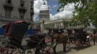 Cuba's horse-drawn carriages struggle to stay