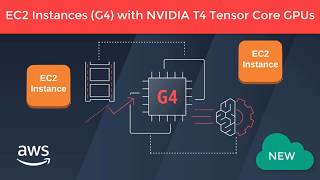 What Is AWS G4 Instance NVIDIA? All NEW