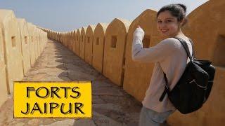Forts- Amber,Nahargarh & Jaigarh || Jaipur