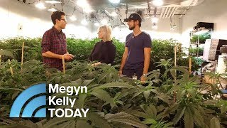 How Legalized Marijuana Is Changing One California Town | Megyn Kelly TODAY
