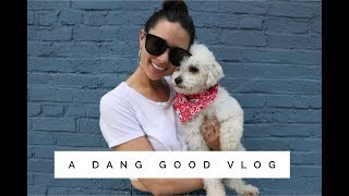 A Dang Good Vlog | We Have VERY Important News! | Aja Dang