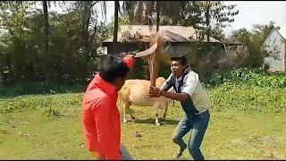 বাংলা top funny video 😂ঝারু কোপ😂 2018 with joker boyes m I s