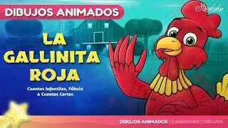La Gallinita Roja cuentos infantiles para dormir & animados