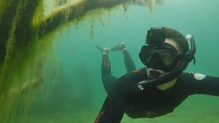 SEARCHING FOR BASS UNDERWATER!