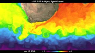 Sea Surface Temperature and the Agulhas Current