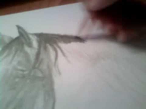How To Draw Horse Jak narysować konia