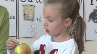 Domowe Przedszkole   Jabłko i Marchewka