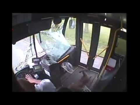 Xxx Mp4 Deer Crashes Into Bus In Johnstown Deer Fare 5 14 13 3gp Sex