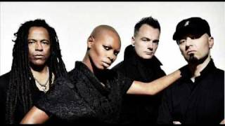 skunk anansie - over the love (2010)