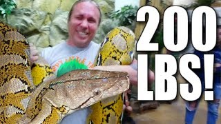 GIANT SNAKE AND LOTS OF SNAKE BITES!!! | BRIAN BARCZYK