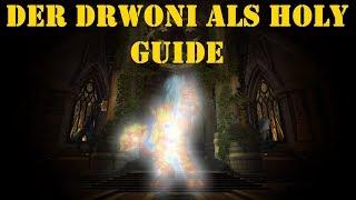[Guide] Der Drowni als Holypaladin [Deutsch]
