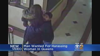 Video Shows Suspect Harassing Woman In Queens