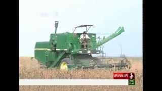 Iran Seeds Oil production توليد دانه هاي روغني ايران