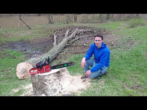 Xxx Mp4 THE UNTHINKABLE HAPPENED WHILE CUTTING DOWN A HUGE ASH TREE NEAR A CABIN TIMBERPRO TAKES A TUMBLE 3gp Sex