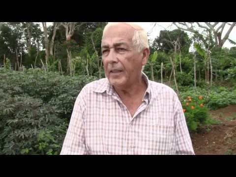 Cosechando lo que no se puede sembrar la siembra de Don Luis Soto