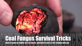Fire without matches: survival tricks with Cramp Balls