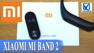Обзор Xiaomi Mi Band 2 браслет с дисплеем, датчиком пульса и шагомером