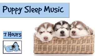 Help your Puppy go to Sleep at Night, with this 7 HOUR Song! Relax My Dog!