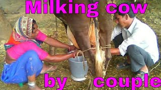 Best woman milking cow of the Power couple.
