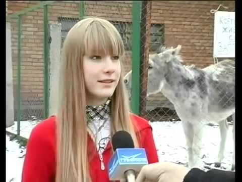 Xxx Mp4 Donkey Owns Girl Hilarious 3gp Sex