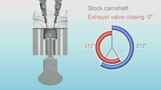 Engine camshaft animation (500-7000 rpm at the end)