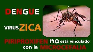 Virus zica