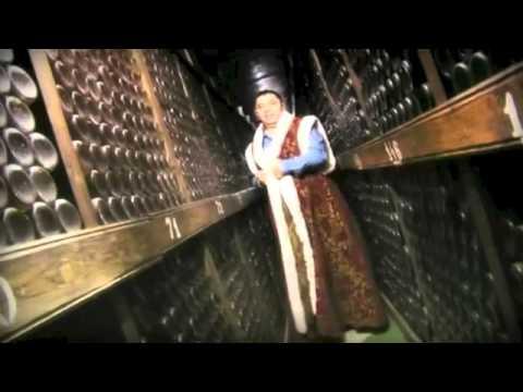 NICOLAE GUTA - BEA COTNARI SI POTI FI REGE (VIDEOCLIP OFICIAL) ZOOM STUDIO