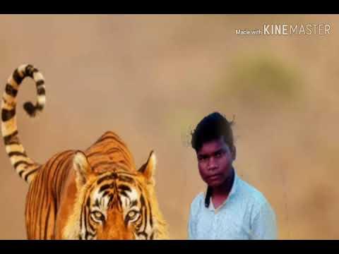 New 2019Nagpuri kya baat hai aapka Mr