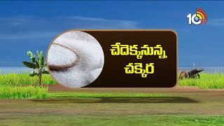 Decrease in Sugar Production As Sugar Prices Rise | Matti Manishi | 10TV News