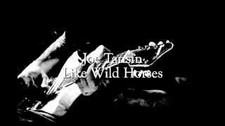 Joe Tansin- Like Wild Horses