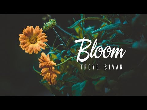 [Lyrics|Vietsub] Bloom • Troye Sivan