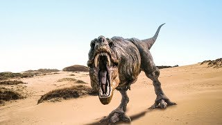 World Top 10 Most Dangerous Dinosaurs - | World Biggest Information