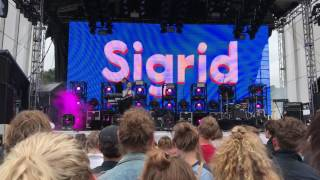 Sigrid - Dynamite - Roskilde Festival 2017
